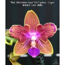 Phal. Miki Golden Sand 1363 бабочка