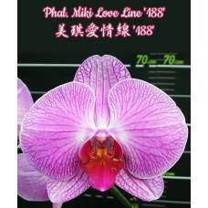 Phal. Miki Love Line 188