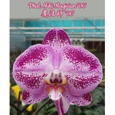 Phal. Miki Magician 06
