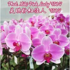 Phal. Miki Pink Lady 1304